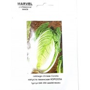 Насіння капусти пекінська Королла (Італія), 350 насіння