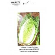 Насіння капусти пекінська Модерн (Італія), 350 насіння