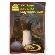 Міцелій гриба Веселка звичайна, 10г