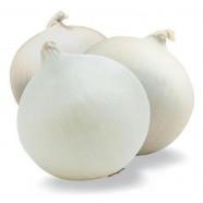 Насіння цибулі ріпчастої Стерлінг F1 білий, (Італія), 0,2 кг