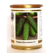 Насіння огірка Без Клопоту F1, (Росія), 0,2 кг