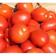 Насіння томату Наміб F1, 1 000 шт.
