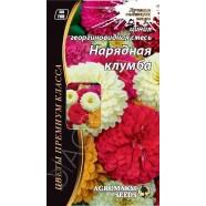 Насіння квітів Цінія Ошатна клумба георгиновидная суміш, 0,3 г