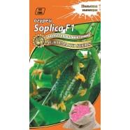 Насіння огірка бджолозапильний інкрустований SOPLICA F1, 5г