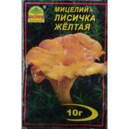 Міцелій гриба Лисичка Жовта, 10г