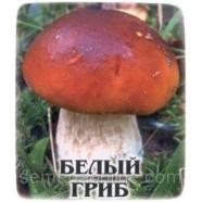 Мицелий гриба Белый, 10г