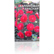 Семена астры Карликовая красная, 100 шт.