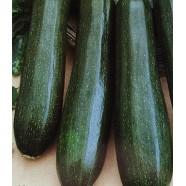 Семена цукини Аэронавт, 0,5кг