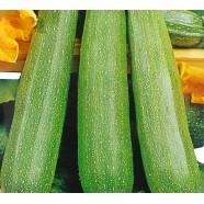 Семена цукини Скворушка, 0,5кг