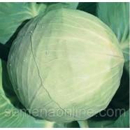 Насіння капусти Білосніжка, 100г