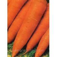 Насіння моркви Червоний Гігант, 100г