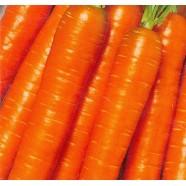 Насіння моркви Імператор, 1 кг