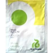 Семена Огурца Кибрия F1, 250 семян