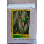 Семена огурца Андрус F1, 0,5кг