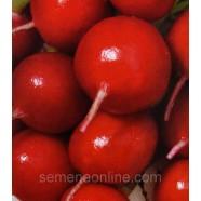 Семена редиса Заря, 100г