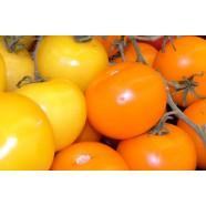 Семена томата Черри Datterini желтый, 100г