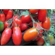 Семена томата Кибиц, 0,5кг