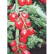 Семена томата Королек, 0,5кг
