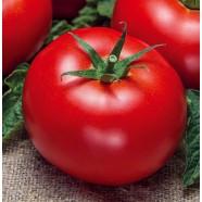 Семена томата Волгоградский 595, 0,5кг