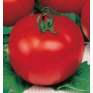 Семена томата Баллада, 0,5кг