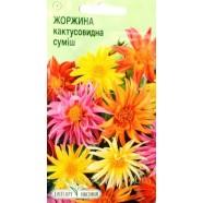 Семена цветов Георгина кактусовидная смесь, 0,1г.