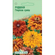 Семена цветов Рудбекия Глориоза смесь, 0,2г.