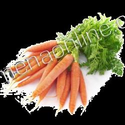 Профессиональные семена моркови в банках