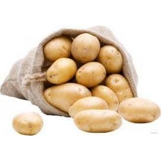 Семена Картофеля в мелкой фасовке