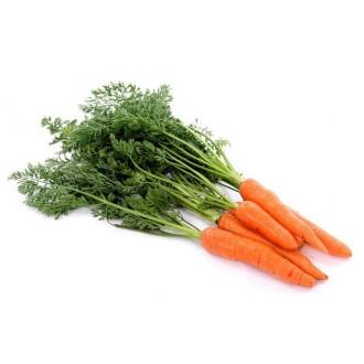 Насіння моркви. Велика фасовка.