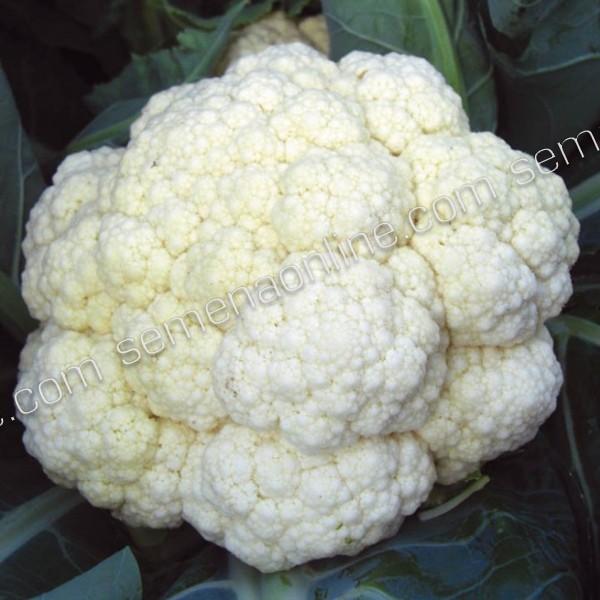 Семена капусты цветная Экспресс (Италия), 250 семян