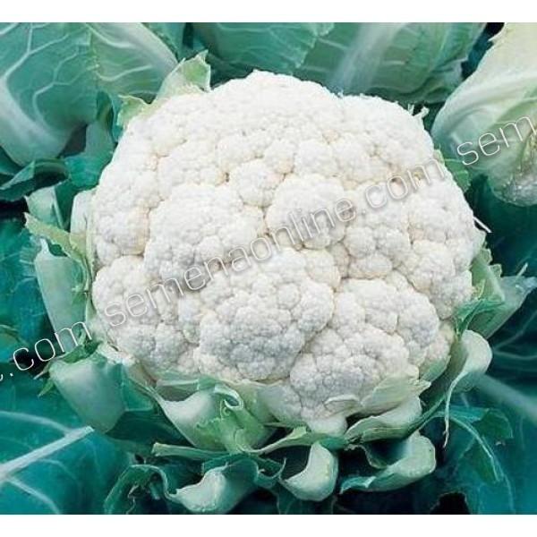 Семена капусты цветная Гарантия (Италия), 250 семян