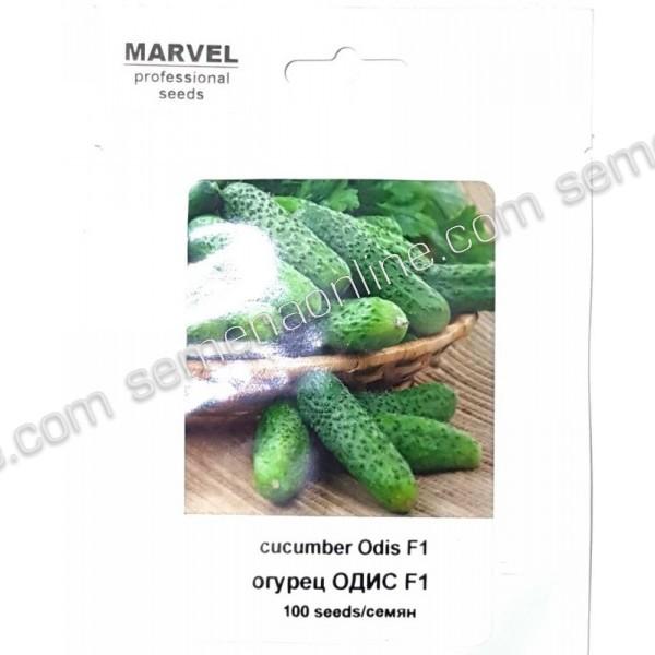 Семена огурца Одис F1 (Польша), 100 семян