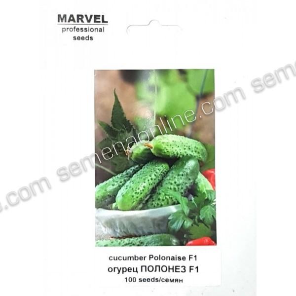 Семена огурца партенокарпический Полонез F1 (Польша), 100 семян