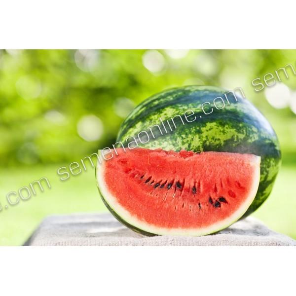 Семена арбуза Большая Пекинская Радость (Россия), 0,5кг