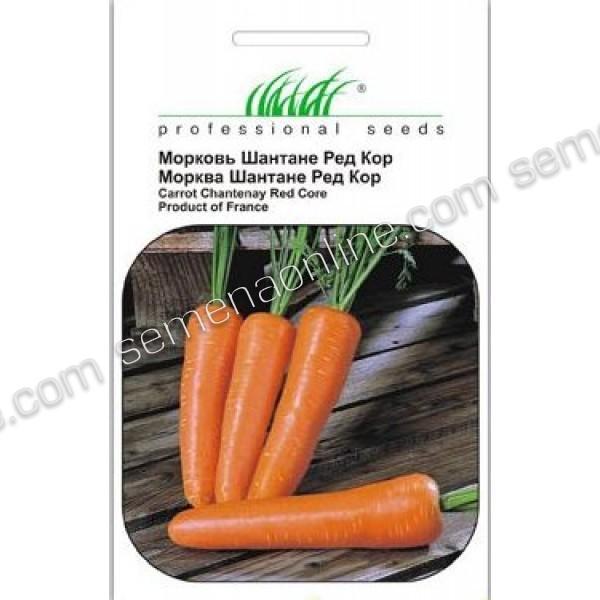 Насіння моркви Шантане, 500 гр.