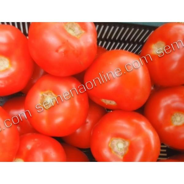 Семена томата Бодерин F1, 500 шт.