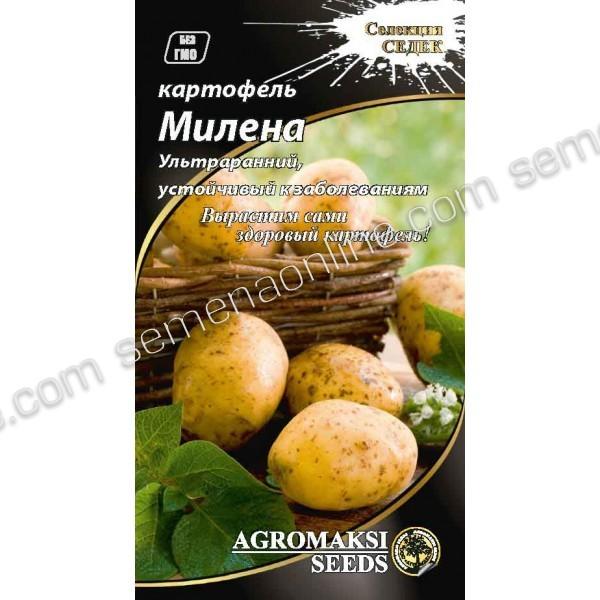 Насіння картоплі Мілена, 0,01 г