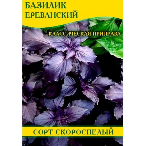 Насіння базиліка Єреванський Фіолетовий, 0,5 кг