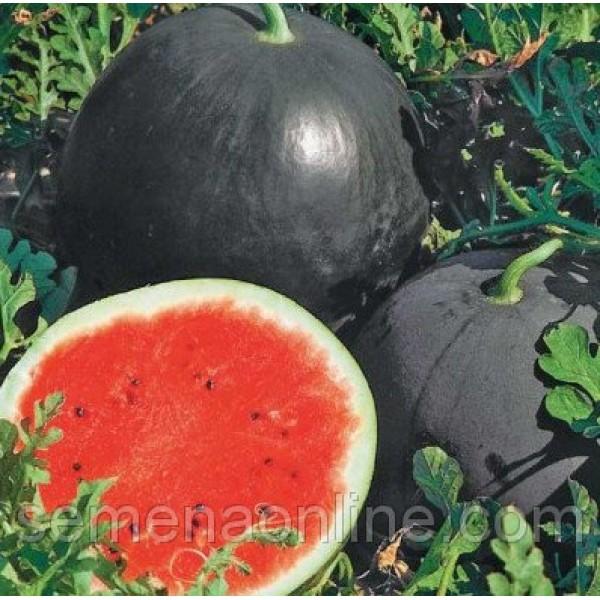 Насіння Кавуна Ред Стар F1, 1000 насіння
