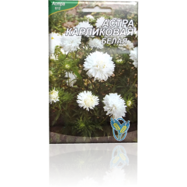 Семена астры Карликовая белая, 100 шт.