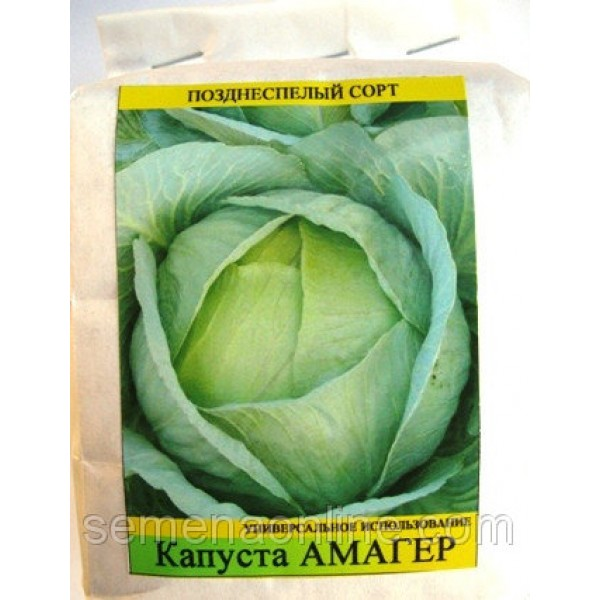 Насіння капусти Амагер, 0,5 кг