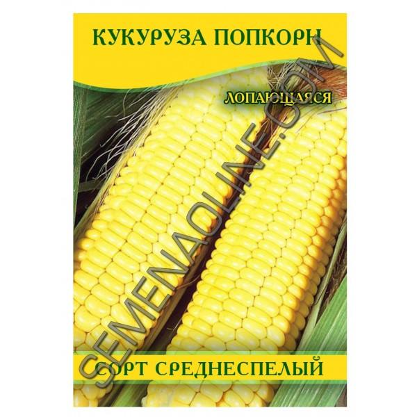 Насіння кукурудзи Попкорн жовтий, 100 г