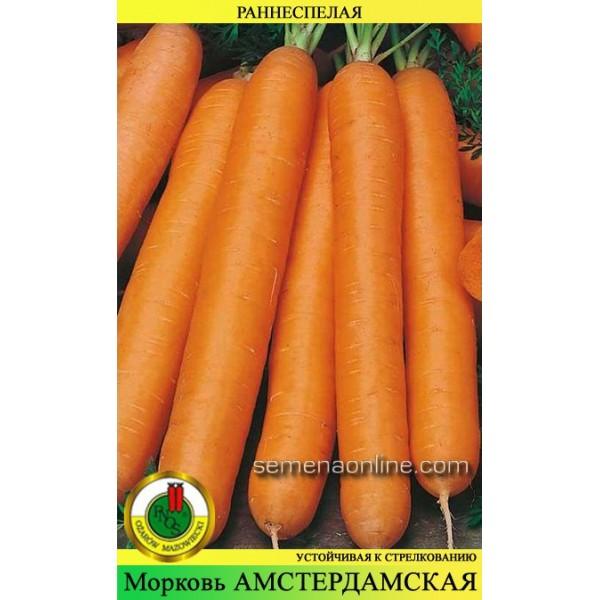 Насіння моркви Амстердамська, 1кг
