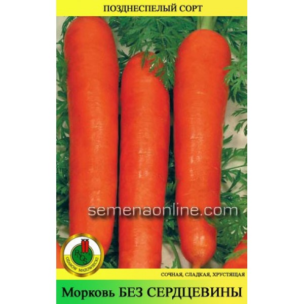 Насіння моркви Без серцевини, 1кг