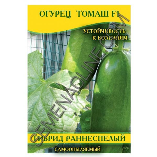 Семена огурца Томаш F1, самоопыляемые, 100г