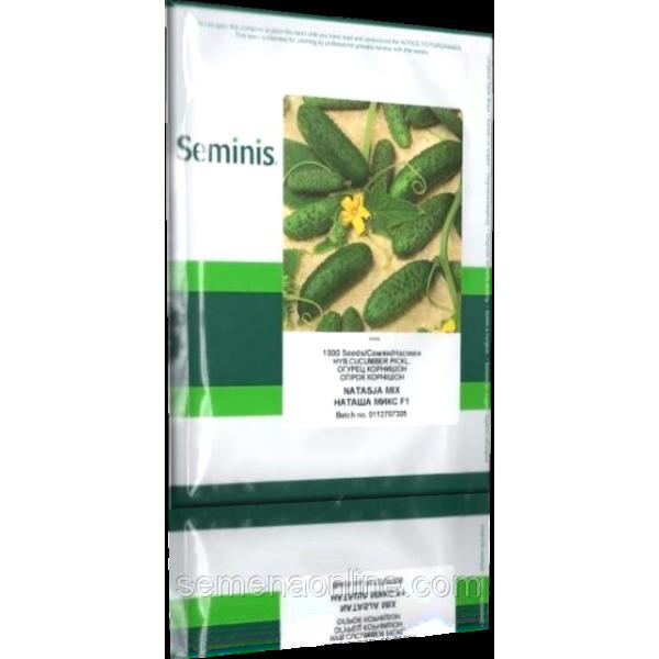 Семена огурца Наташа Микс F1 (Natasja Mix F1), 1000 семян