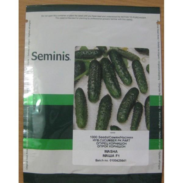 Семена Огурца-корнишона Маша F1, 250 семян