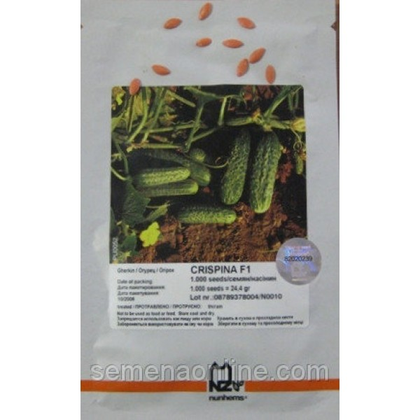 Семена Огурца Криспина F1 (Crispina F1), 1000 семян