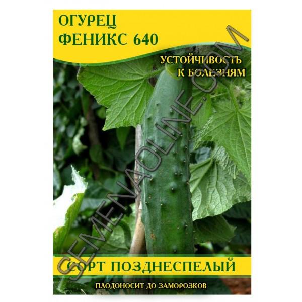 Насіння огірка Фенікс 640, 0,5 кг