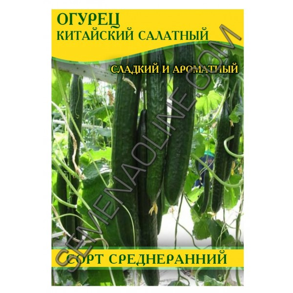 Насіння огірка Китайський Салатний, 0,5 кг